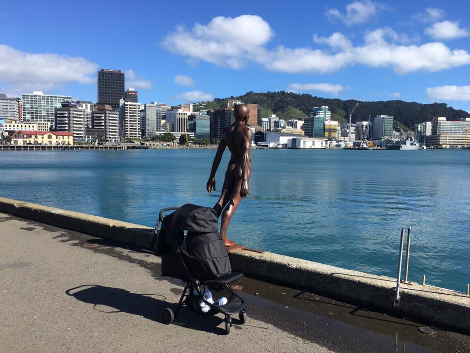 C pram and cover Wellington Harbour